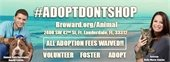 Adopt Don't Shop for Your Next Pet