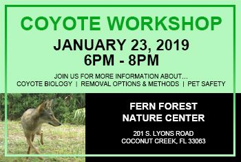 Coyote Workshop on January 23 2019