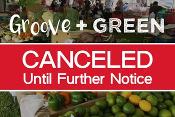 Groove and Green Canceled 2019