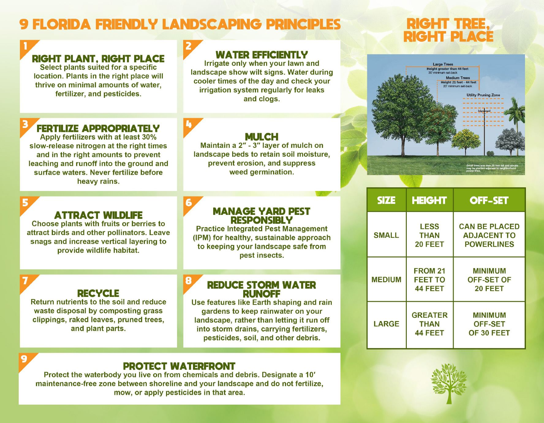 Tree Giveaway April 2018-Brochure 2